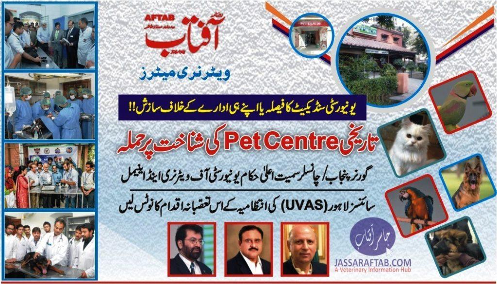 Veterinary University Dog Hospital