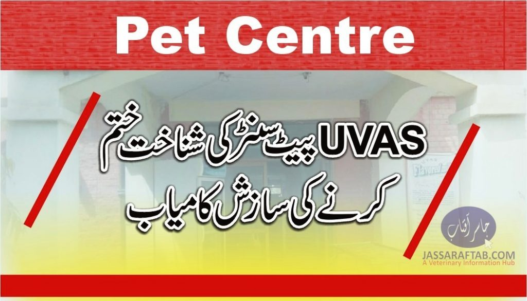 Pets clinic and hospital of UVAS