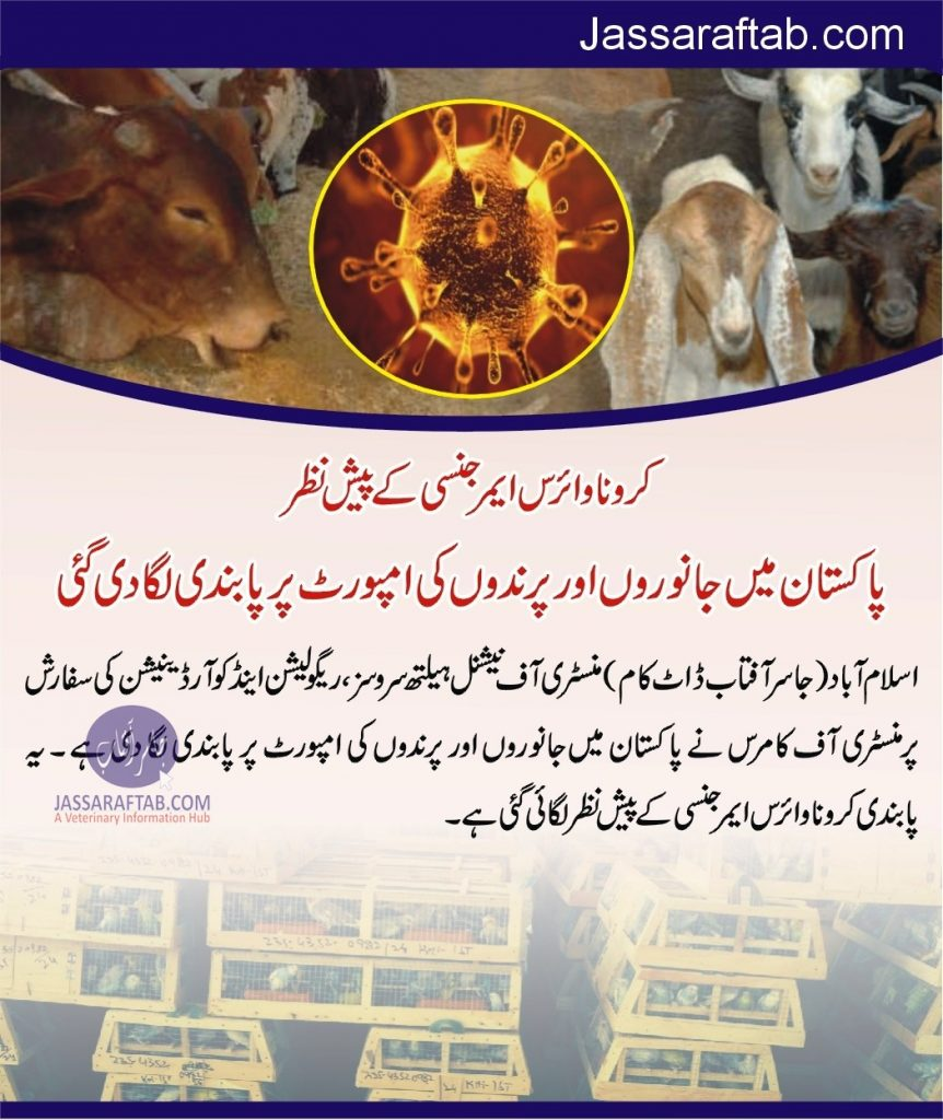 Ministry bans import of  animals