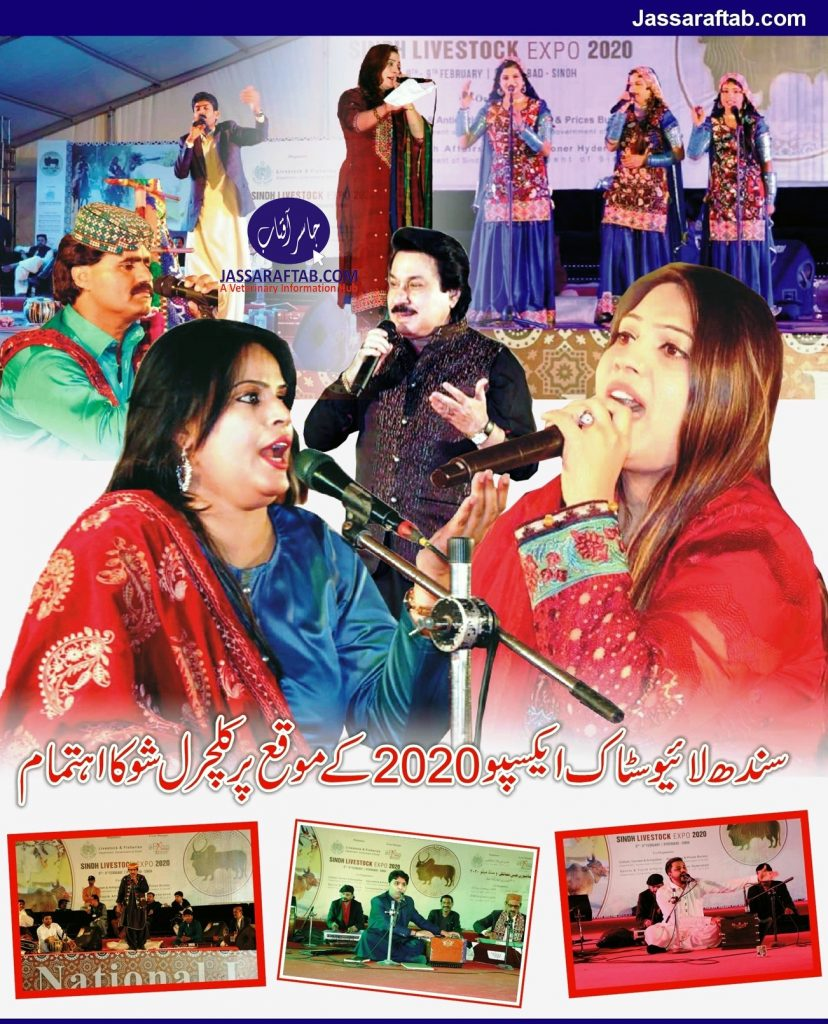 musical cultural sindhi songs sho