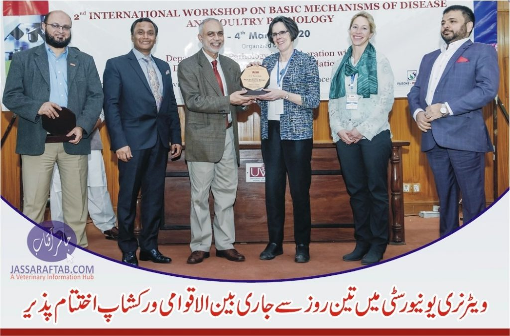 workshop on 'Mechanism of Disease and Poultry Pathology'