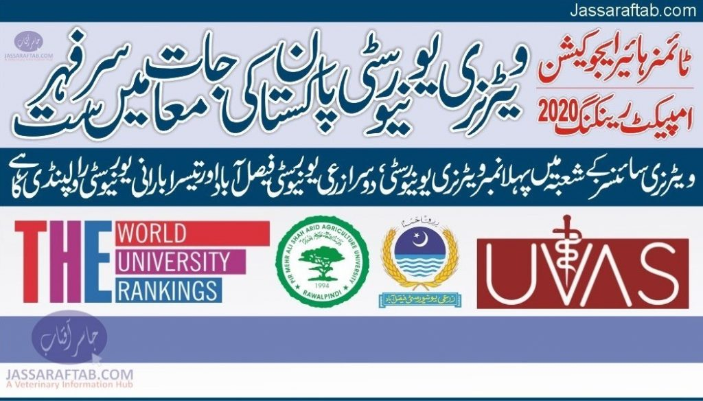 Universities impact ranking Pakistan