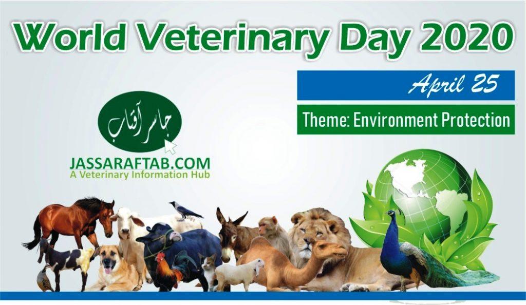 world veterinary day banner 2020