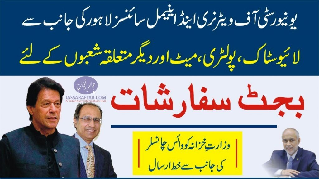 Hafeez sheikh Budget Recommendations