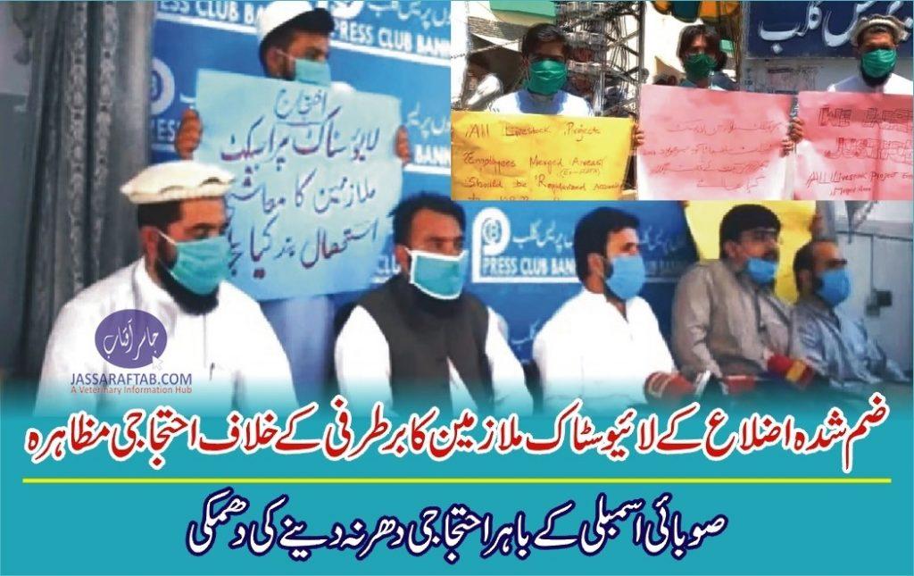 Livestock employees protest