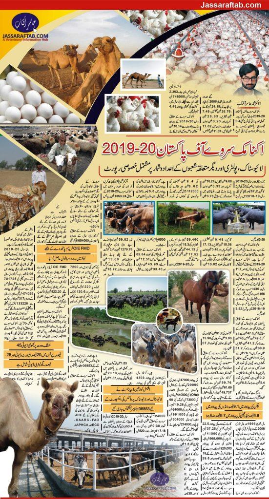 economic survey 2019-20 livestock poultry figures