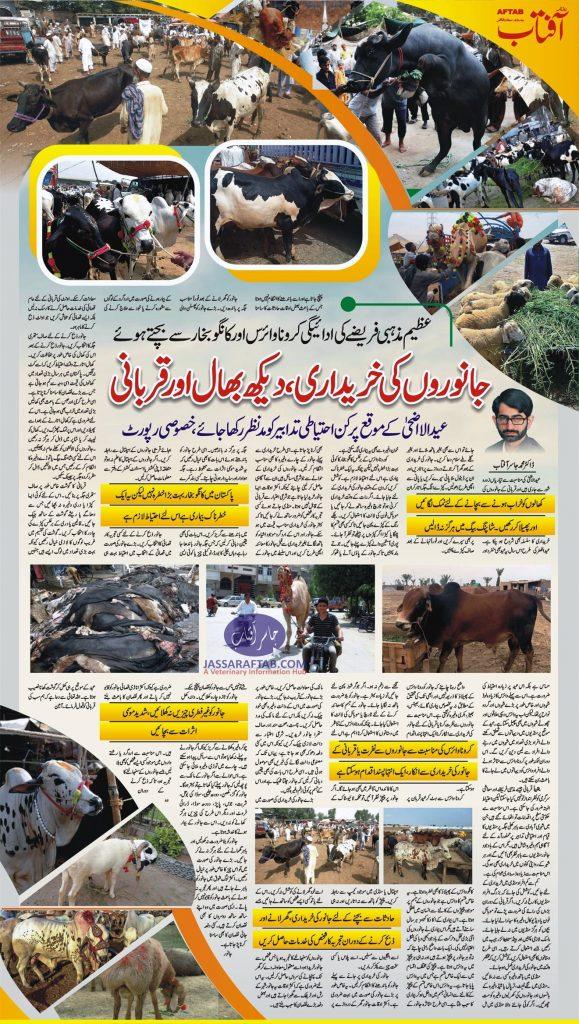 How to avoid coronavirus from Qurbani Animals