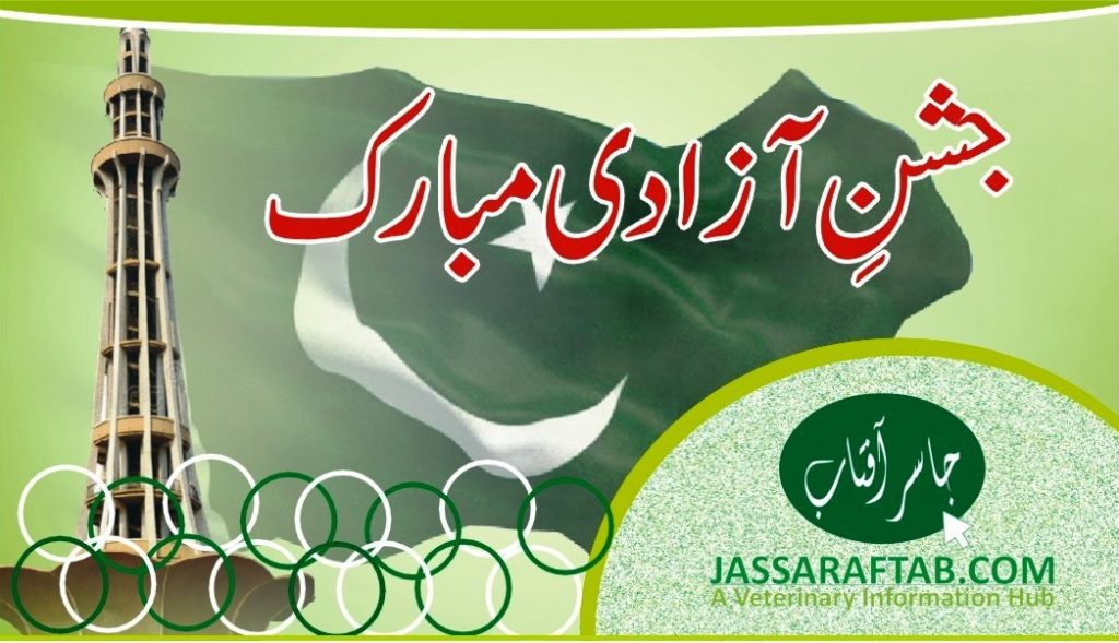 73rd independence day banner pakistan