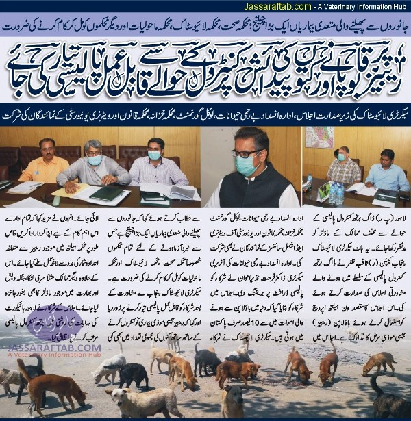 rabies control in Pakistan