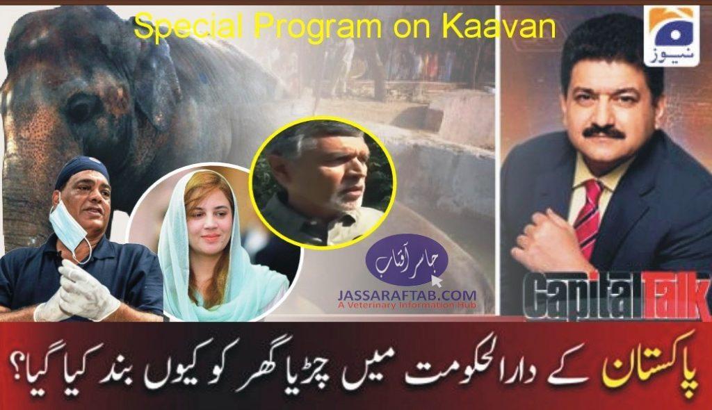 Capital Talk Hamid meer with islamabad zoo Kaavan