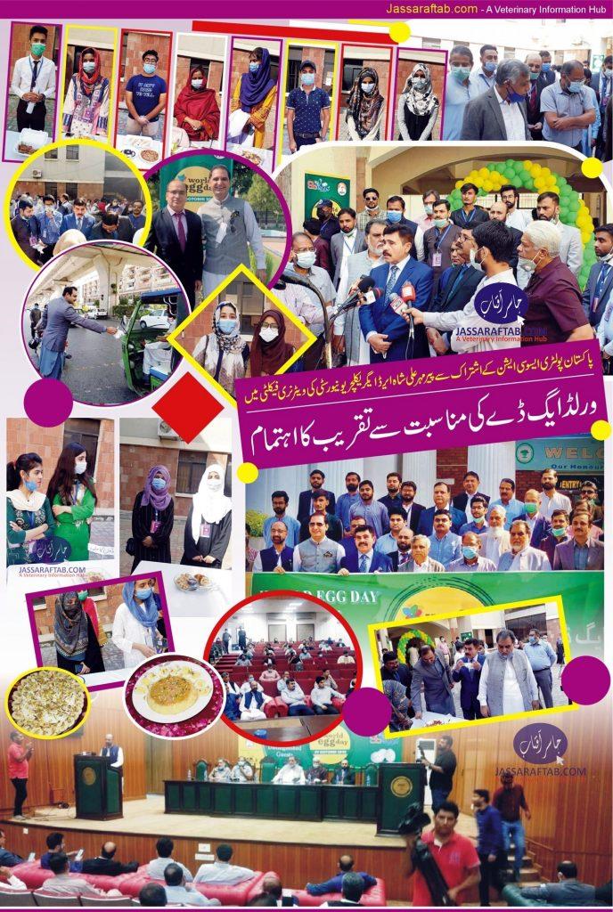 arid university Rawalpindi egg day