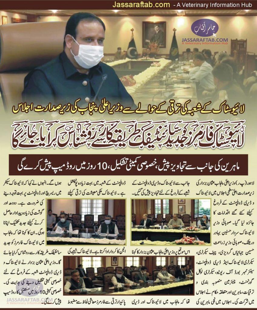 chief minister meeting on livestock punjab