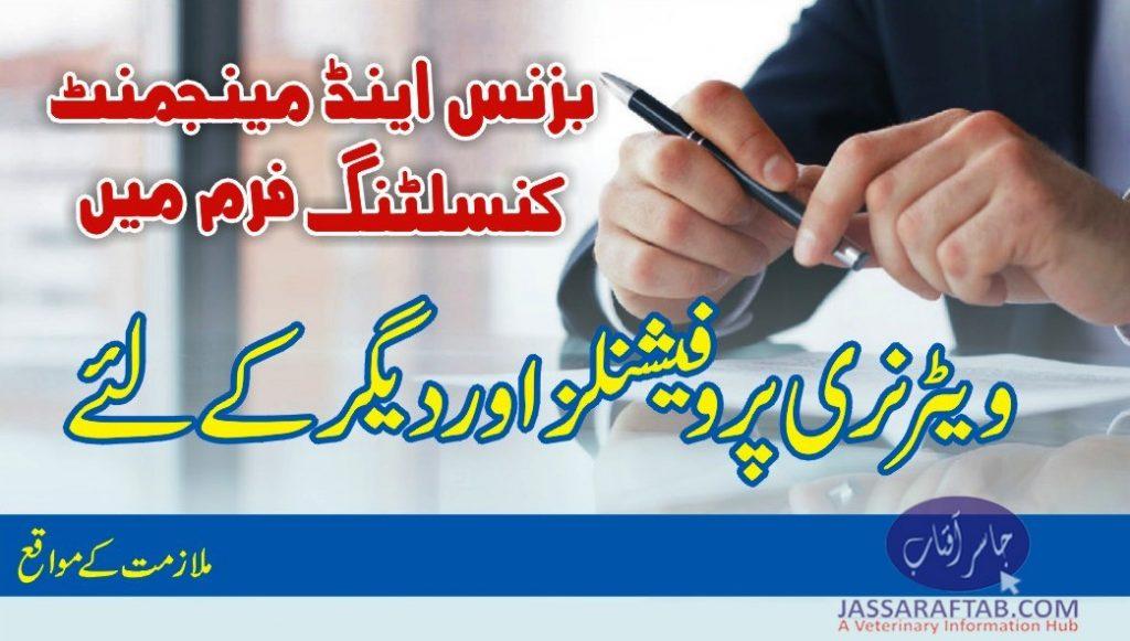 Consultancy job