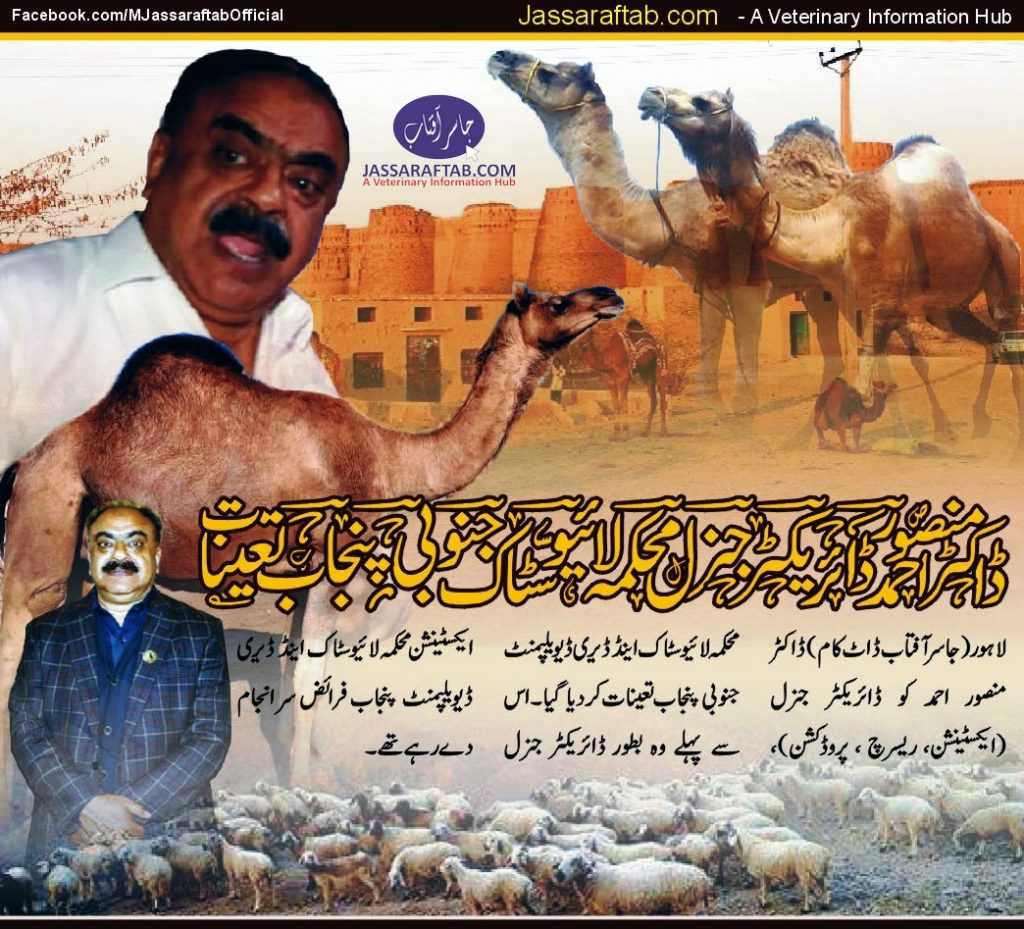 Director General Livestock Punjab