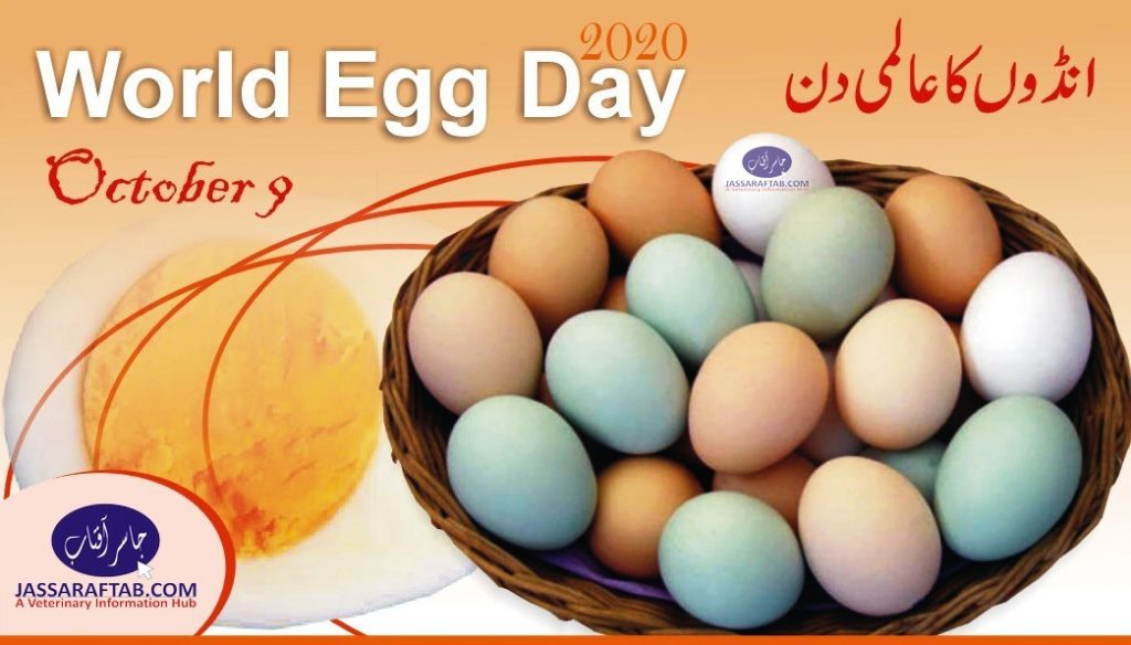 world egg day 2020