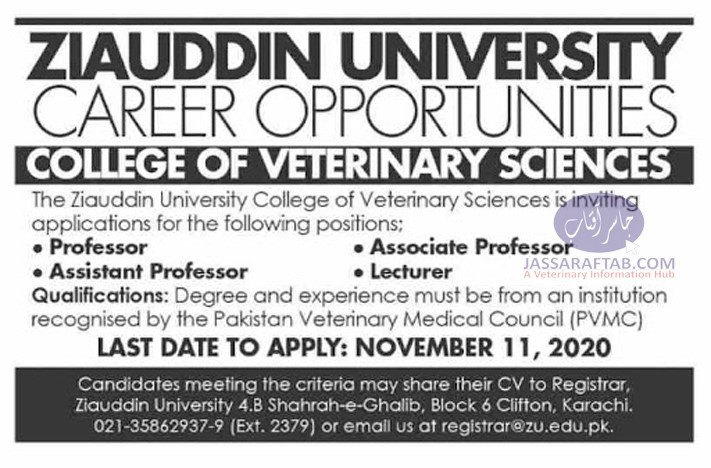 Ziauddin University DVM Veterinary College