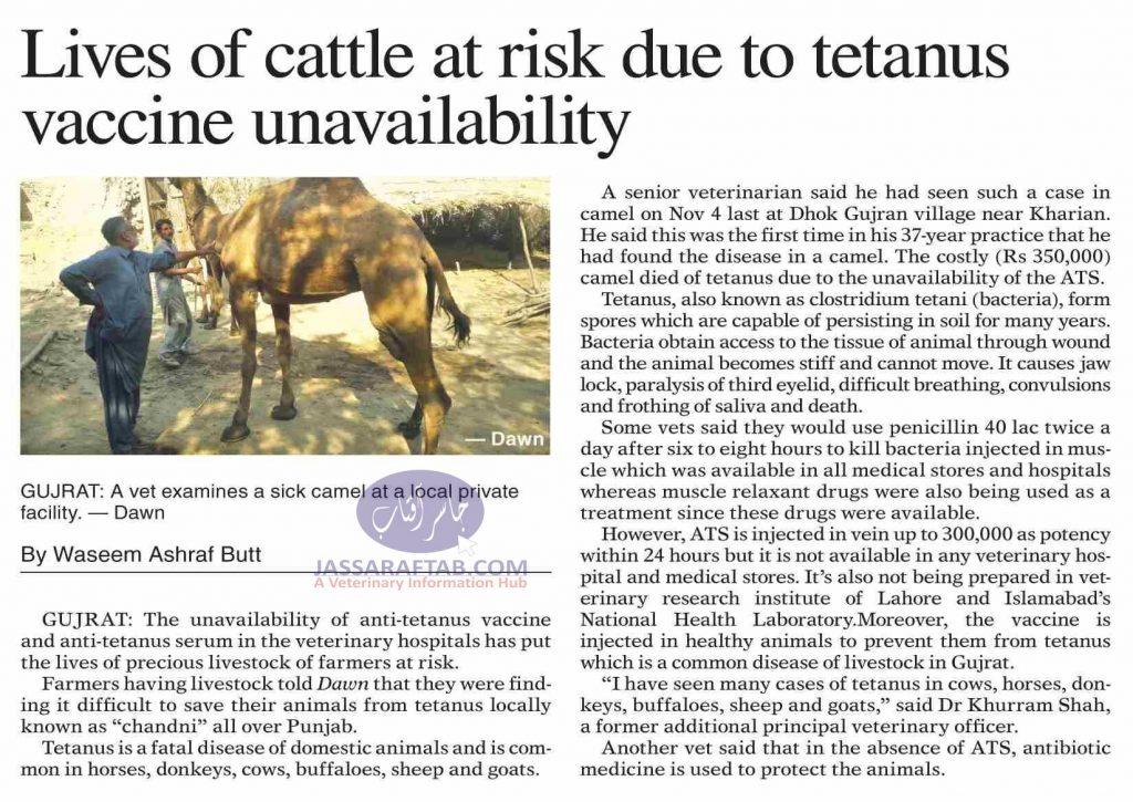 tetanus vaccine for animals