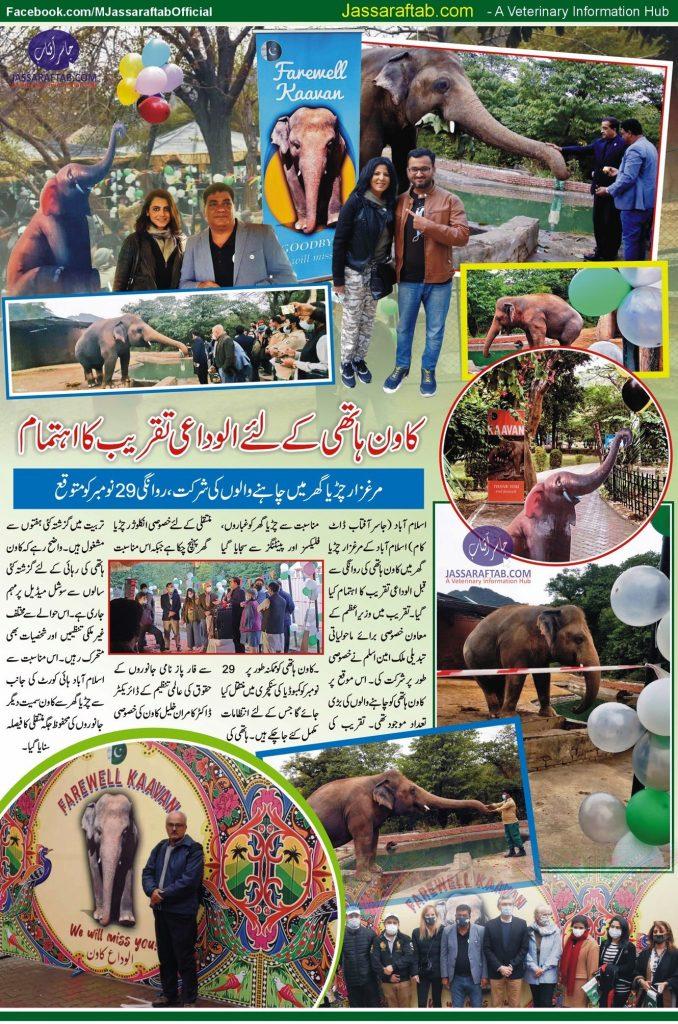 Farewell to Kaavan Elephant