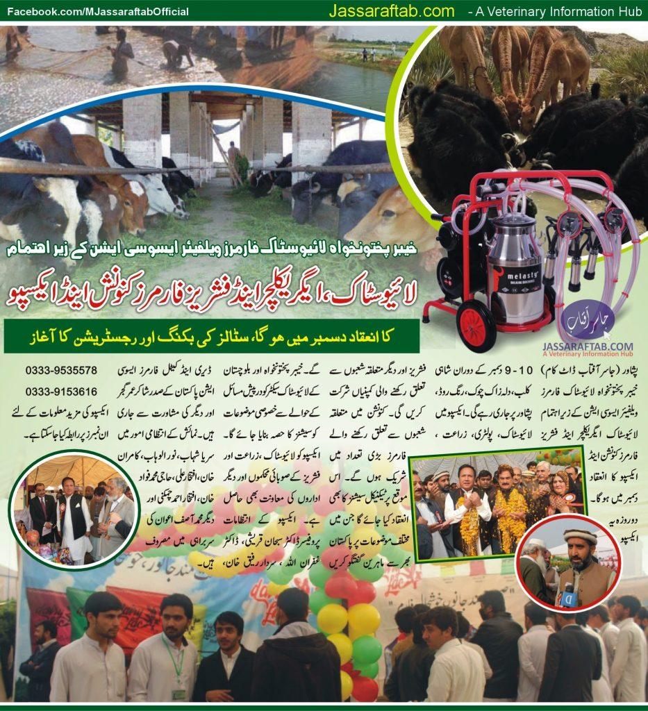 Livestock and fisheries expo KPK