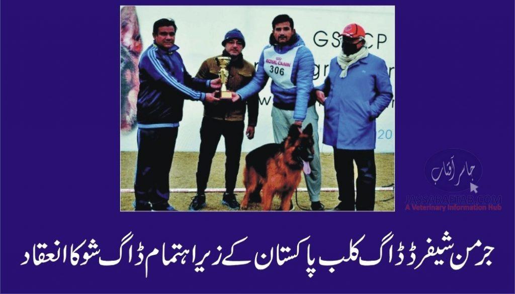 Dog show organised by German Shepherd Dog Club Pakistan