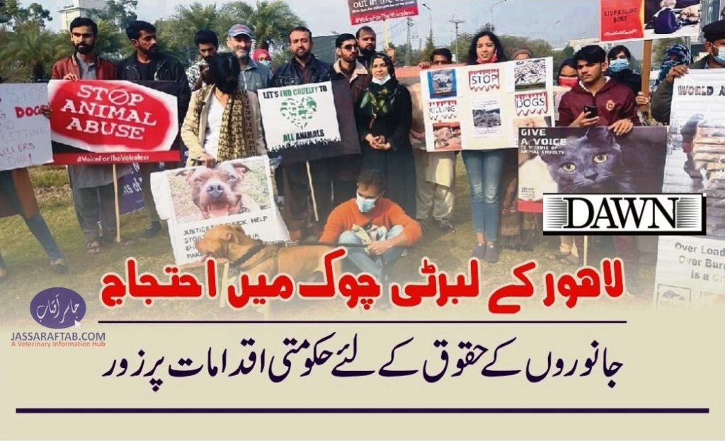 Protest held against animal cruelty