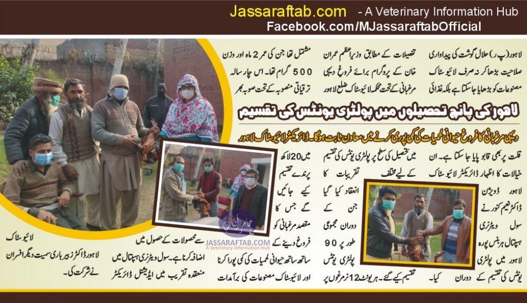 Director Livestock Lahore