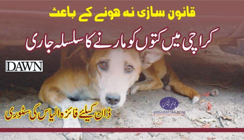 Dog Control Bylaws