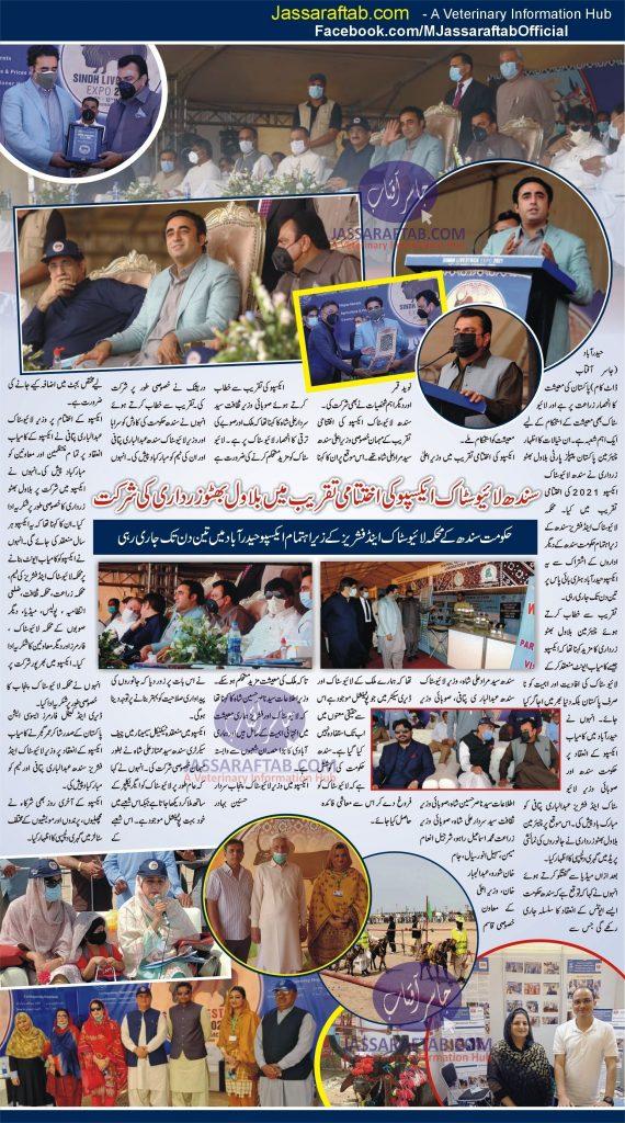 Bilawal Bhutto Zardari at  Closing ceremony of Sindh Livestock Expo