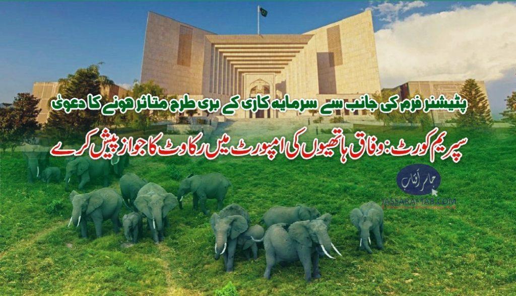 elephant import export