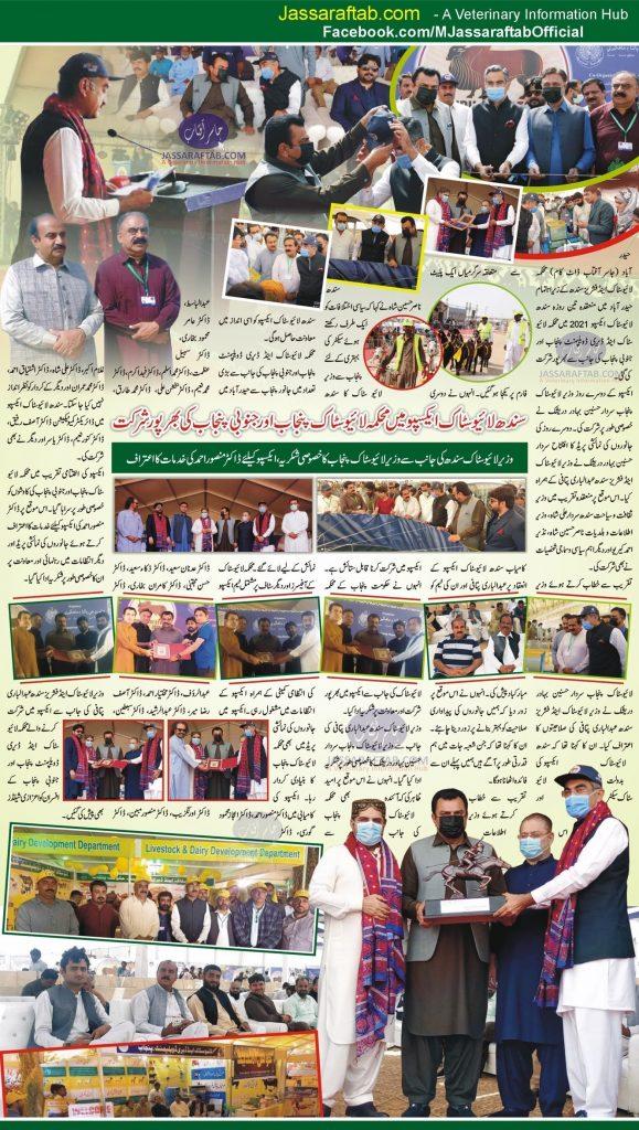 Livestock Department punjab and south punjab at sindh livestock expo