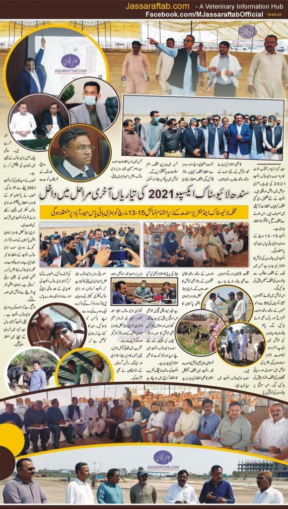 Sindh Livestock Expo 2021 preparations
