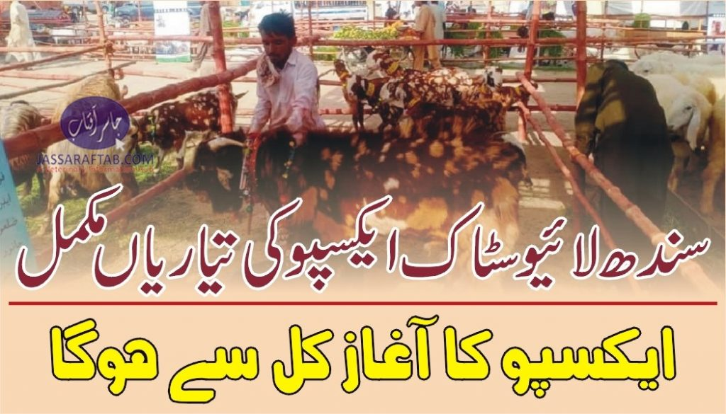Sindh livestock expo 2021 will start from tomorrow