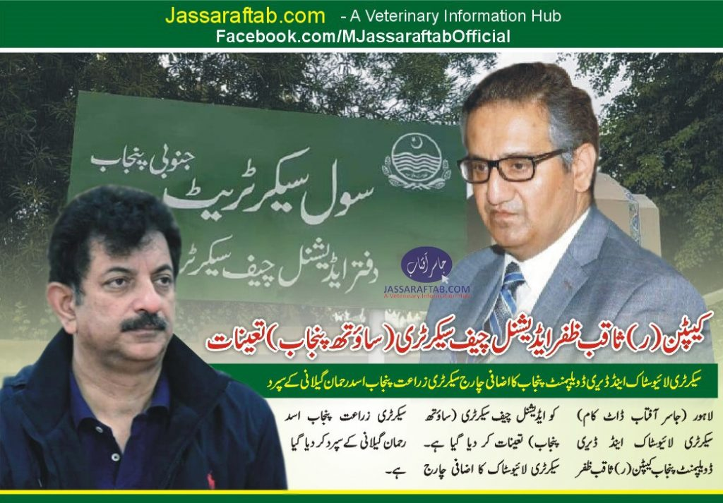 additional chief secretary south Punjab