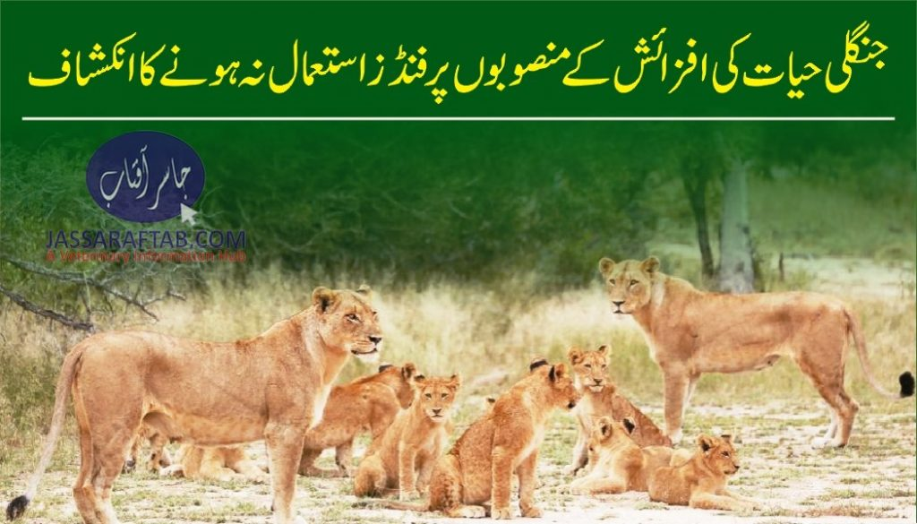 Wildlife breeding