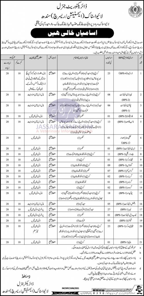 Job opportunities at directorate general livestock Sindh