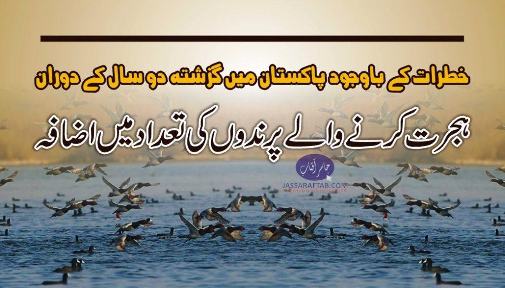 wwf report on migragory birds