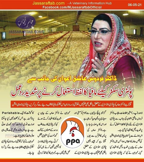 mafia of poultry industry