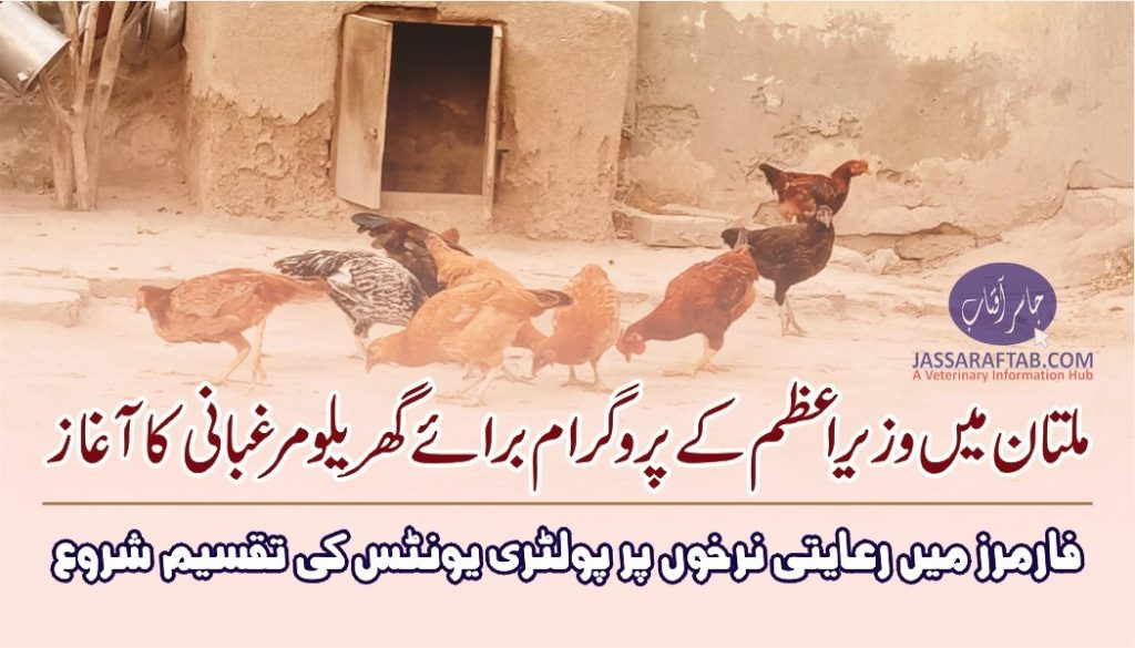 Distribution of poultry units in Multan