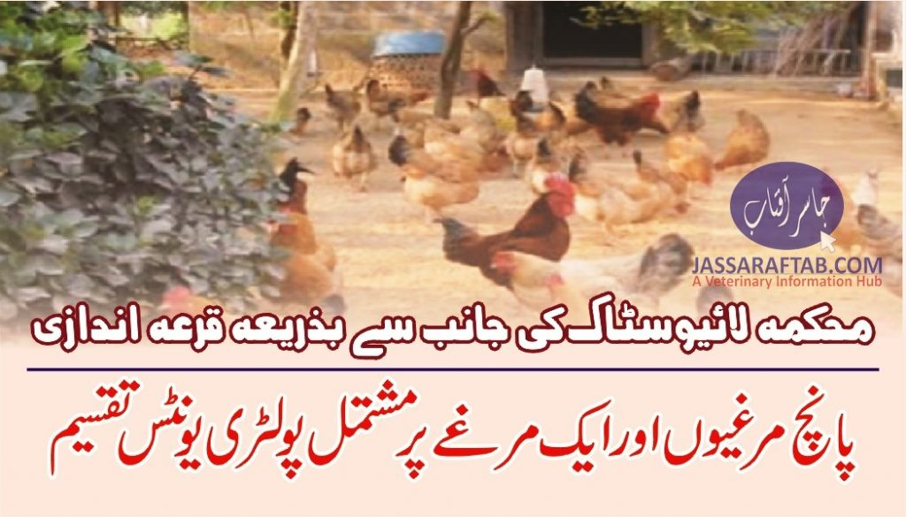 Poultry units distribution among farmers
