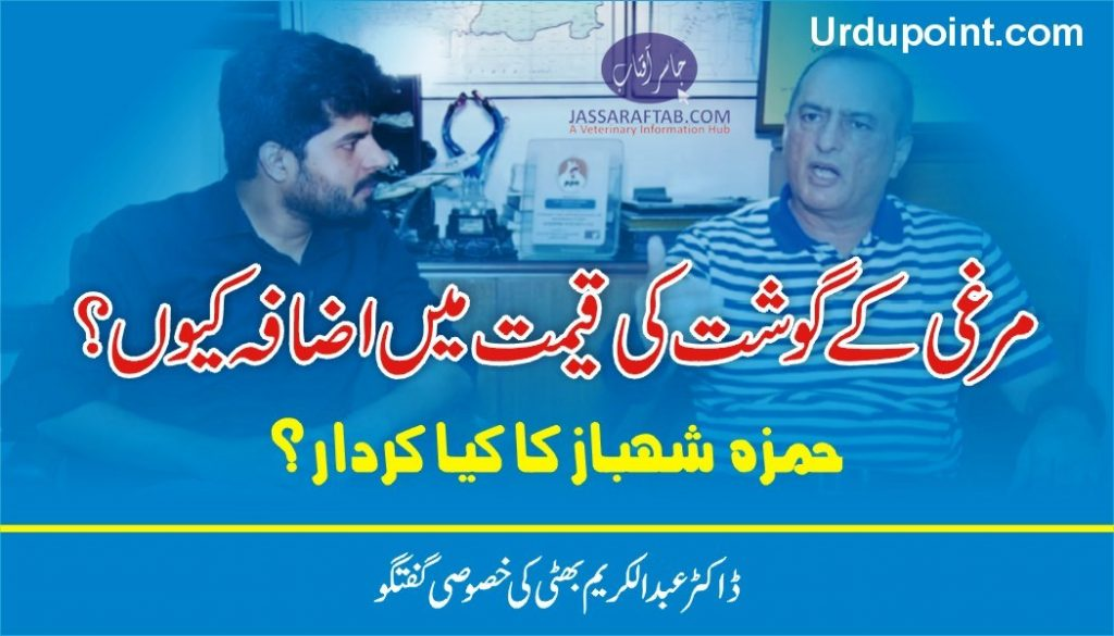 role of hamza shahbaz in poultry rate