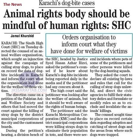 animal rights and human rights