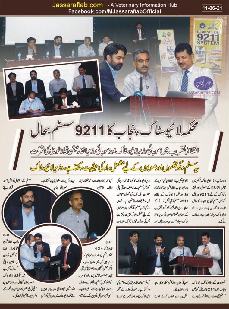 9211 virtual governance system