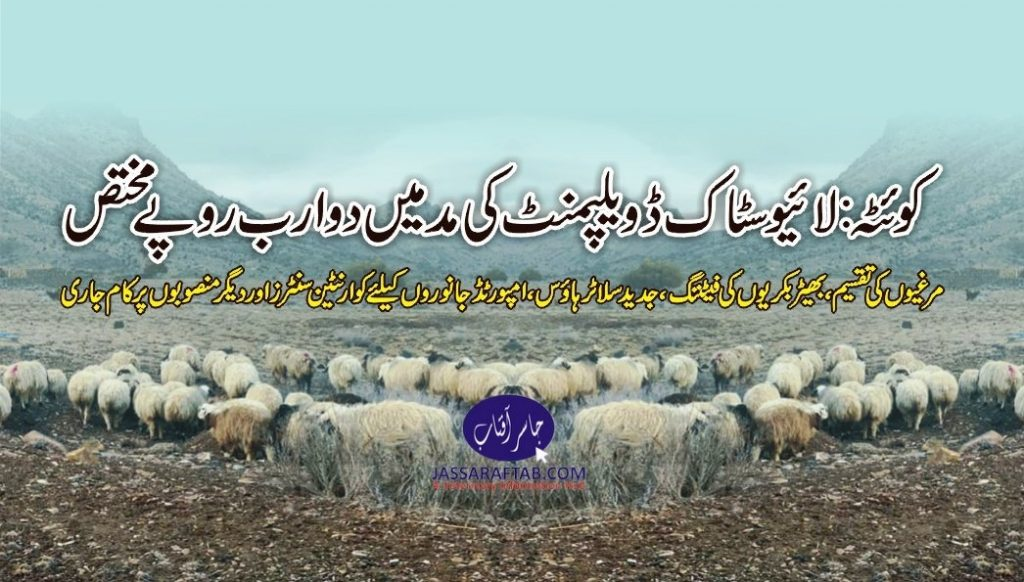 development of budget of livestock balochistan