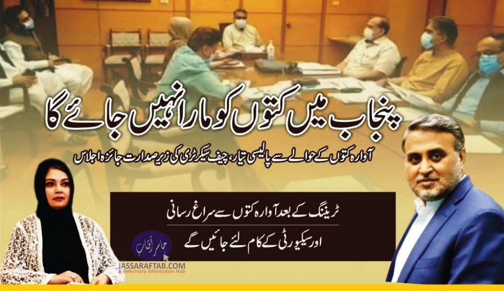 rabies control policy chief secretary punjab