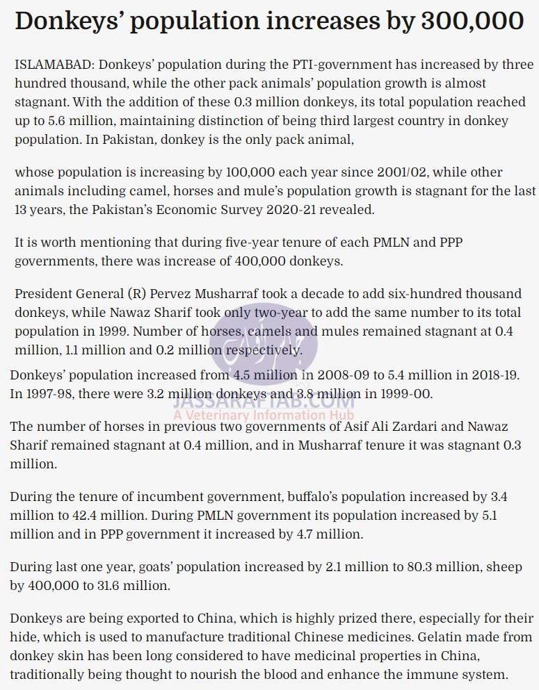 Donkey population increased in Pakistan