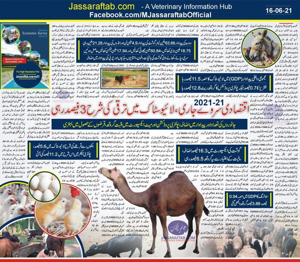 economic survey livestock data