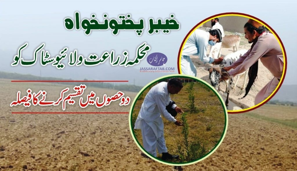 KPK Livestock and agriculture department