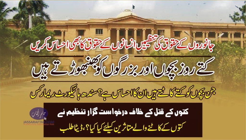 sindh high court dog bites case