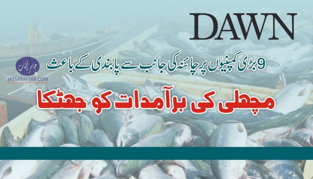 Chinese Ban on Fish Export