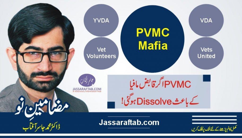 PVMC Mafia